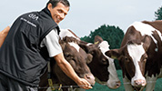 milking philosophy tcm167-80952